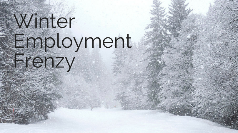 WinterEmploymentFrenzy.png